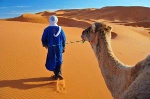 A berber taking his camel for a stroll in the Sahara.