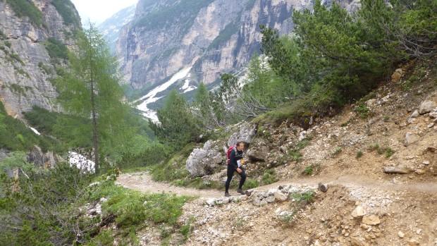 Cortina in June